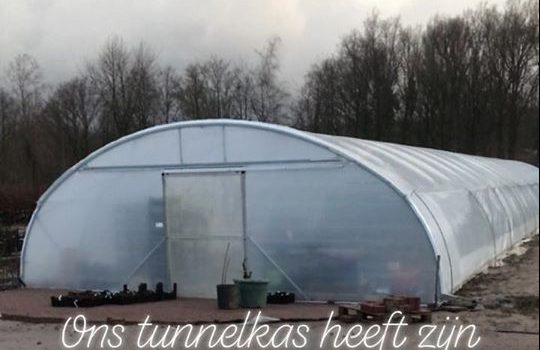Tunnelkas Storm Ciara
